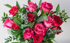 Download wallpapers pink roses, festive ...