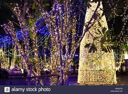 String Light Outdoor Christmas Tree Decorative Outdoor String Lights Hanging On Tree In The