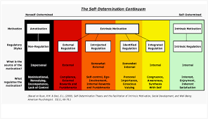 what is self determination theory pdf  self determination theory diagram