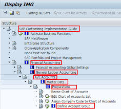 How To Create Account Group In Sap Sap Training Tutorials