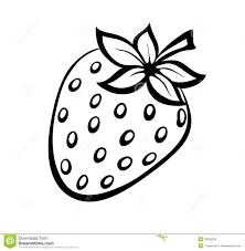 black and white strawberry clipart. Fine Strawberry Intended Black And White Strawberry Clipart A