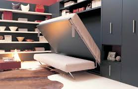 Attractive Murphy Bed With Sofa Home Design Furniture