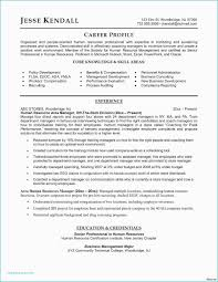 Company Newsletter Template Word New Microsoft Word Strategic Plan