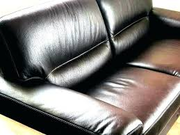 dog leather couch ing dogs scratching sofas