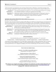 Ceo Resume Template Inspiration Resume Sample For A CEO