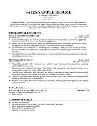 Sales Experience Resume Example Examples Of Resumes