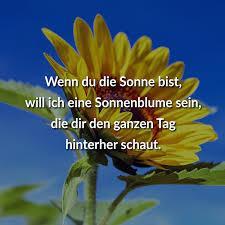 ᐅ Wenn Du Die Sonne Bist Will Ich Eine Sonnenblume Sein Die Dir