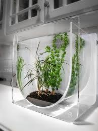 Cool Aquariums Cool Aquariums For Your Kids Room Designrulz