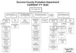 Cms Org Chart Probation Org Chart Cms Page About Us Probation County