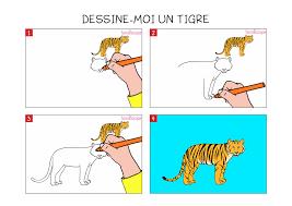 Apprendre Dessiner Un Tigre En 3 Tapes