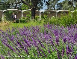 brand new houston botanic garden