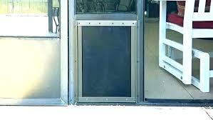 custom dog doors pet storm door screen door sliding screen door pet door pet door storm