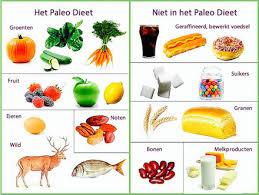 Het paleo dieet boek