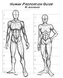 Human Proportions Chart Human Figure Proportion Chart Sculptue Google Search