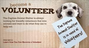 animal shelter volunteer poster. On Animal Shelter Volunteer Poster