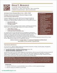 Executive Resume Templates Word Magnificent Download Free Resume Templates Luxury Resume Template Download Word
