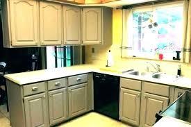 cool rustoleum cabinet transformations kit colors u2016 puntodevista info