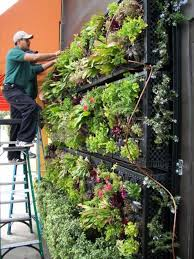 Small Picture 1434 best Vertical Garden Design images on Pinterest Vertical