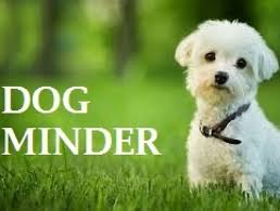 Dog Minder Pet Boarding Service Available In Athy Kildare