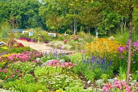 floral garden. Floral Paradise Gardens. (In An Attempt To Revive The Area In Ohio, USA Garden I