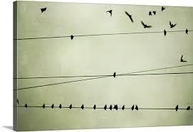 birds on telephone wire canvas on birds on wire canvas wall art with birds on telephone wire wall art canvas prints framed prints wall
