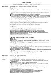 Strategic Business Development Manager Resume Samples Velvet Jobs