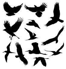 Flashアニメーションでも使えるfree の鳥のシルエットイラスト Web