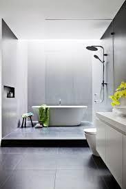 Bathroom Pretty Skylightthroom Pictures Design Best Skylights