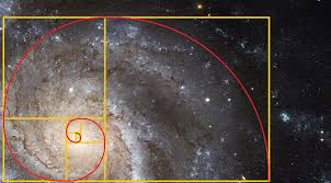 Image result for fibonacci series and golden ratio