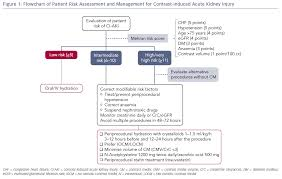 Figure 1 Flowchart Of Patient Risk Assessment And