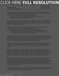 Resume Professional Profile Free Resume Example And Writing Download