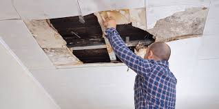 A cure for water damage | Zurich Insurance