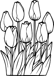 Small Picture Seven Tulips Coloring Page Wecoloringpage