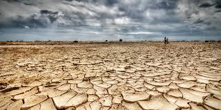 the end of cheap food archives vikram mansharamani o water shortage facebook