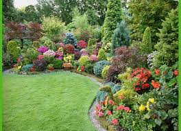 Small Picture Image result for shade garden under tree Green Thumb Pinterest