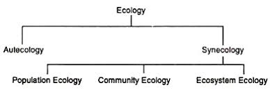 essay on ecology on the basis of the kind of environment or habitat ecology has been sub divided into the following branches