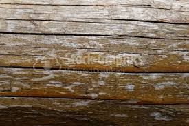 horizontal wood fence texture. Simple Fence Horizontal Wood Fence Texture Intended Wood Fence Texture Z
