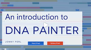 X Dna Fan Chart Dna Painter Visualizations And Chromosome Mapping For