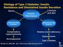 type diabetes essay english news papers in bangalore paying type 2 diabetes essay