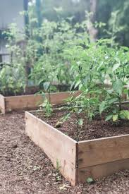 to build a raised garden bed for
