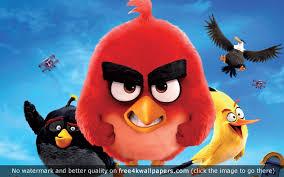 Angry Birds Movie HD wallpaper   Bird wallpaper, Angry birds movie, Witch  wallpaper