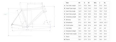 Litespeed Size Chart Litespeed T5 Frame Complete Bicycles Accessories And Servicing Hup Leong Company Online