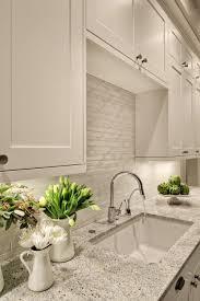 Backsplash For Bianco Antico Granite Decor Custom Inspiration Design
