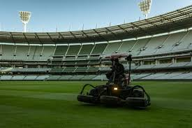 Scientists are currently testing the plant's potential against the novel coronavirus with regard to the novel coronavirus, seeberger warns that people should be vigilant. Mcg Will Host India Boxing Day Test Match If Crowds Are Allowed Cricket Australia
