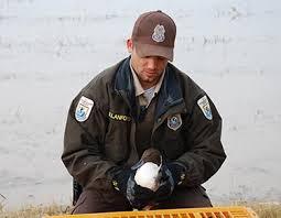 career information federal wildlife officer doing biology