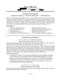 Resume Examples It Professional The Top 4 Executive Resume Examples