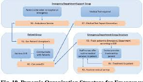 Figure 10 From Organizational Structure For Emergency