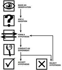 Example Of A Flow Chart Observation Scientific Method Steps Howstuffworks