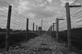 barbed wire fence concentration camp. Fine Concentration Stock Photo  Two Rows Of Barbwire Fence In Majdanek Concentration Camp  Blackandwhite Color Range Emphasizes Morose Buildings On Barbed Wire Fence Concentration Camp E