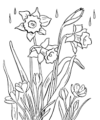 Small Picture Spring Flowers Coloring Pages Printable Flower Coloring Pages